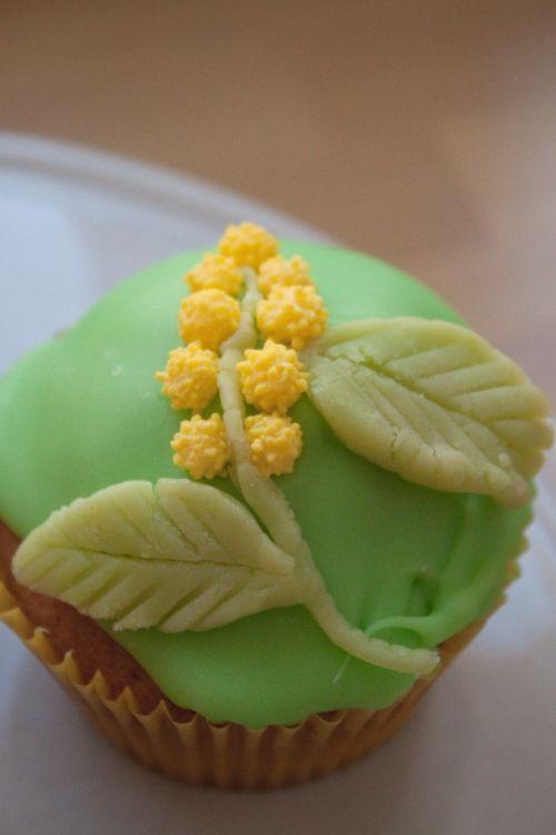 cupcakes-glaces-et-decores-6