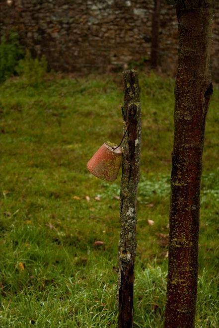 niche à insectes jardin potager du château du Gros Chesnay à Fillé-sur-sarthe