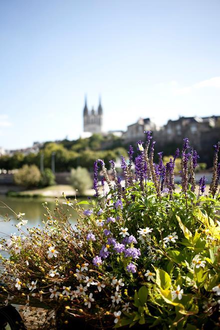 La Loire, des fleurs, la Cathédrale d'Angers @AnneDemay