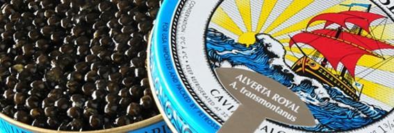 quel caviar choisir, comment le servir, comment l'accommoder 3