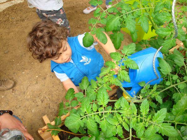 Dans le jardin de l'association AVERTI LES GALOPINS