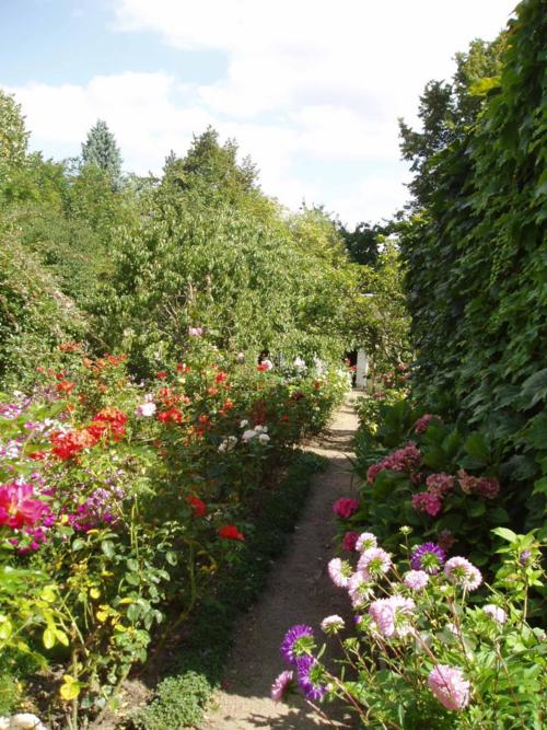 Le jardin de mon papi, en fleurs. Je ne serai jamais à la hauteur… mais ce sont de tels bons souvenirs…