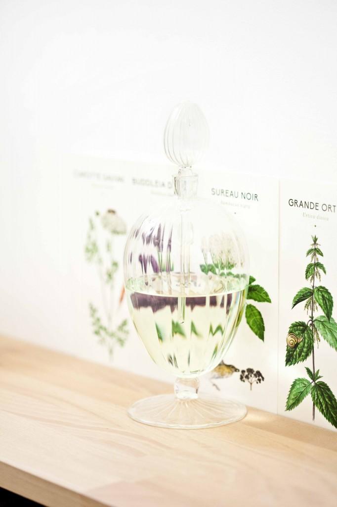 Décoration flacon de verre à parfum et fiches plantes de Noé 2