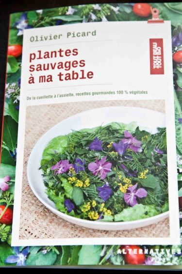 Couverture du livre Les Plantes Sauvages à ma Table d'Olivier Picard