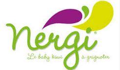 Nergi® logo