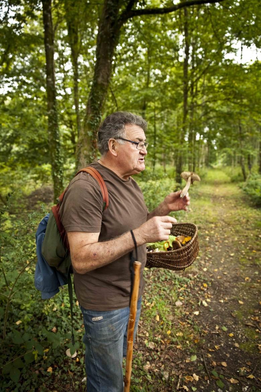 Michel, l'un des mycologues qui te guidera dans la forêt des Andaines, à la recherche du champignon délicieux! Bagnoles de l'Orne week-end champignons Michel c