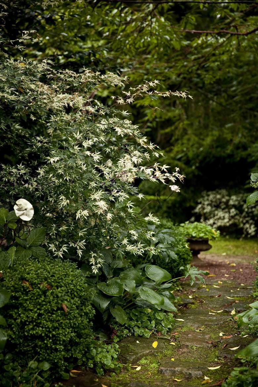 Le Jardin Retiré Bagnoles de l'Orne 10c