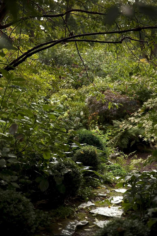 Le Jardin Retiré Bagnoles de l'Orne 1c