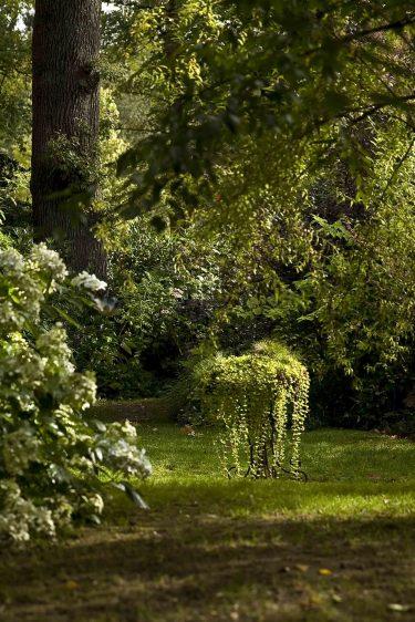 Les images du Jardin Retiré à Bagnoles de l'Orne, clairière.