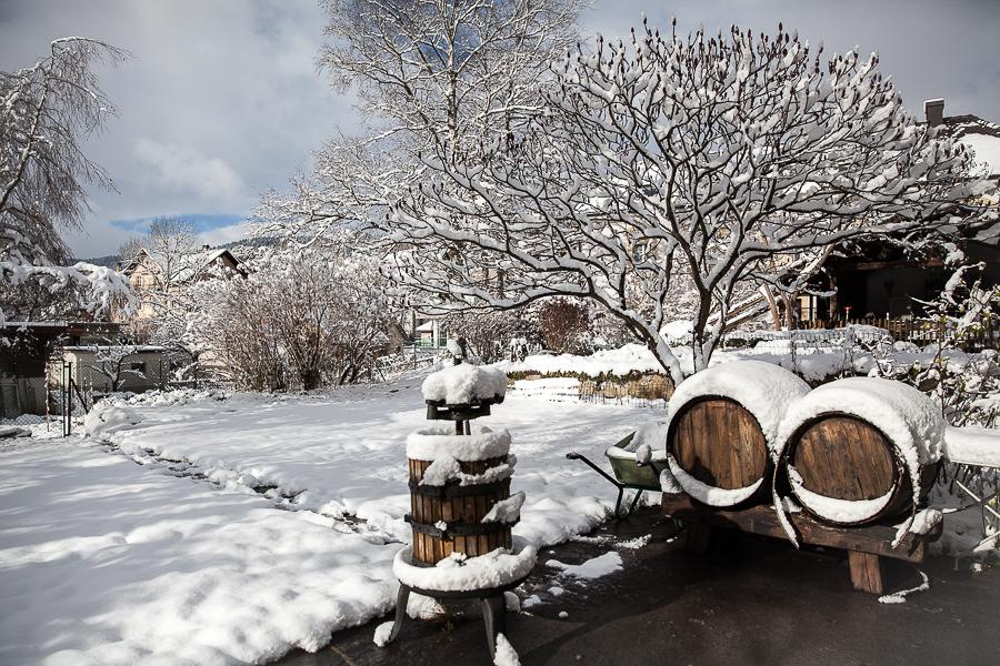 Route de l'absinthe et soufflé glacé à la Fee verte-8