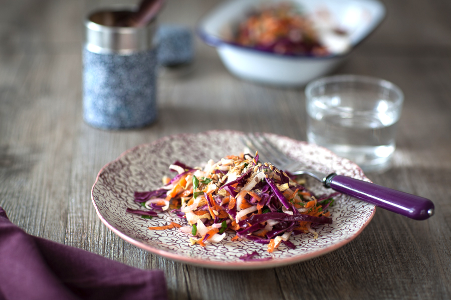 Salade vitamines d'hiver chou, endives, carottes©AnneDemayReverdy02