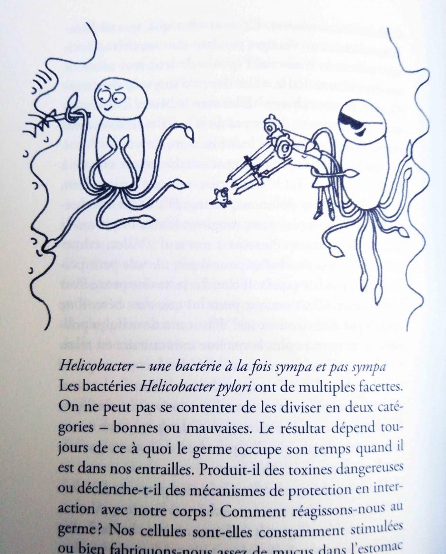 Extrait Le Charme Discret de l'Intestin illustrations Jill Enders 2