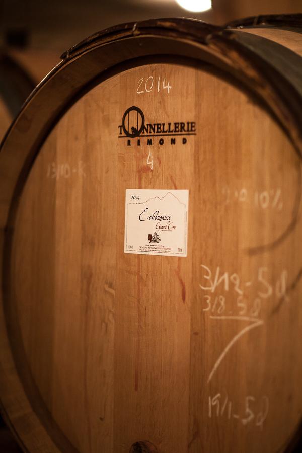 Bourgogne Claire Naudin©AnneDemayReverdy03