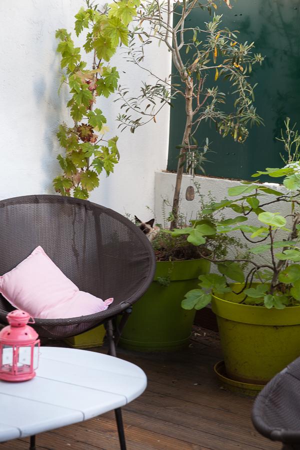 Le jardin en été Table Montmartre©AnneDemayReverdy02