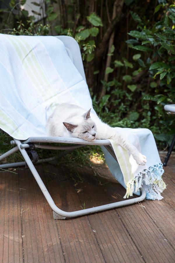 Le jardin en été Table Montmartre©AnneDemayReverdy03