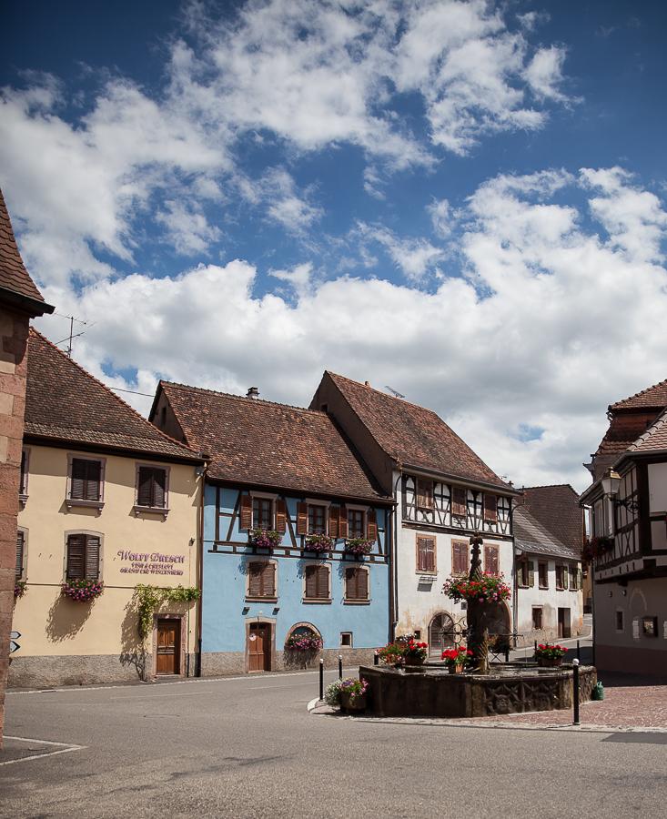Les Rieslings vins d'Alsace©AnneDemayReverdy51