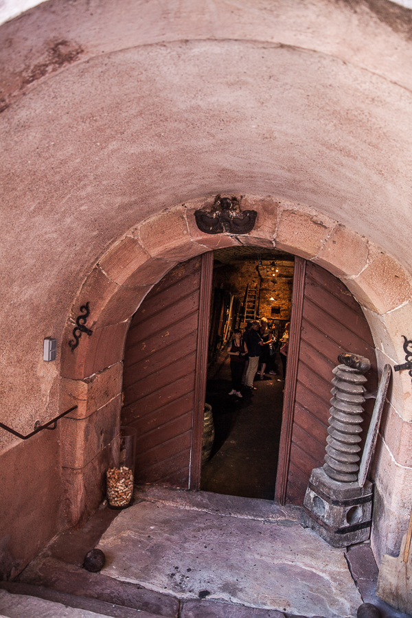 Les Rieslings vins d'Alsace©AnneDemayReverdy63