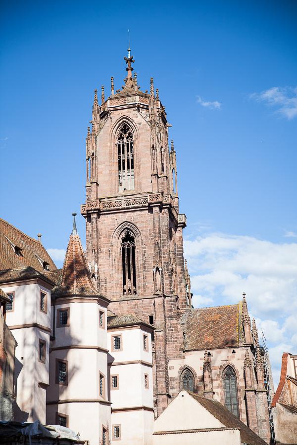 Les Rieslings vins d'Alsace©AnneDemayReverdy68
