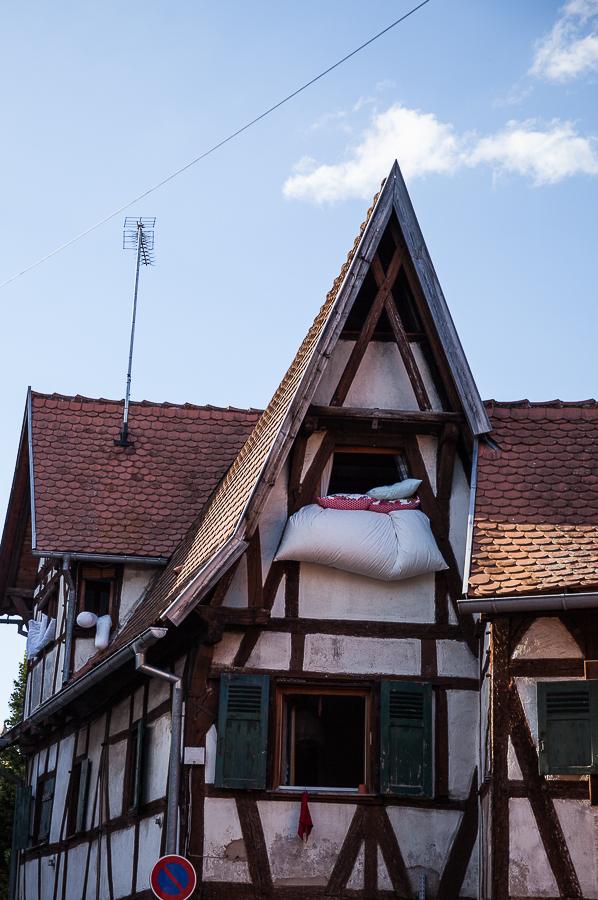 Les Rieslings vins d'Alsace©AnneDemayReverdy78