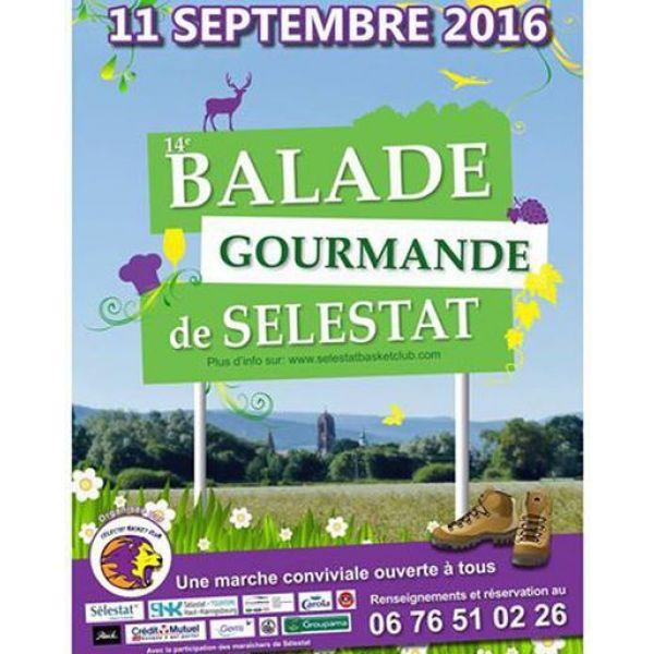 balade-gourmande-a-selestat-2016-50478-600-600-F