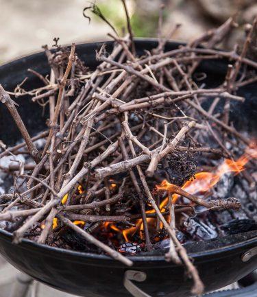 barbecue weber alumé au petit bois et aux ceps de vigne