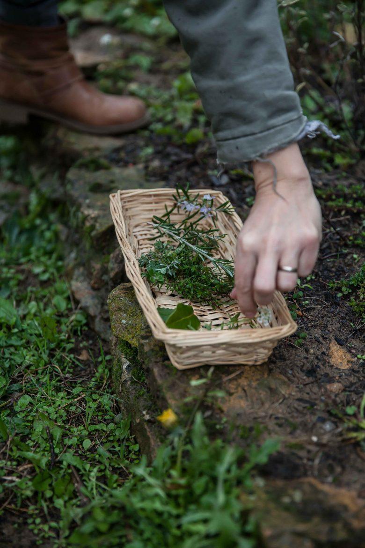 les herbes du jardin pour le fromage la cervelle de canut