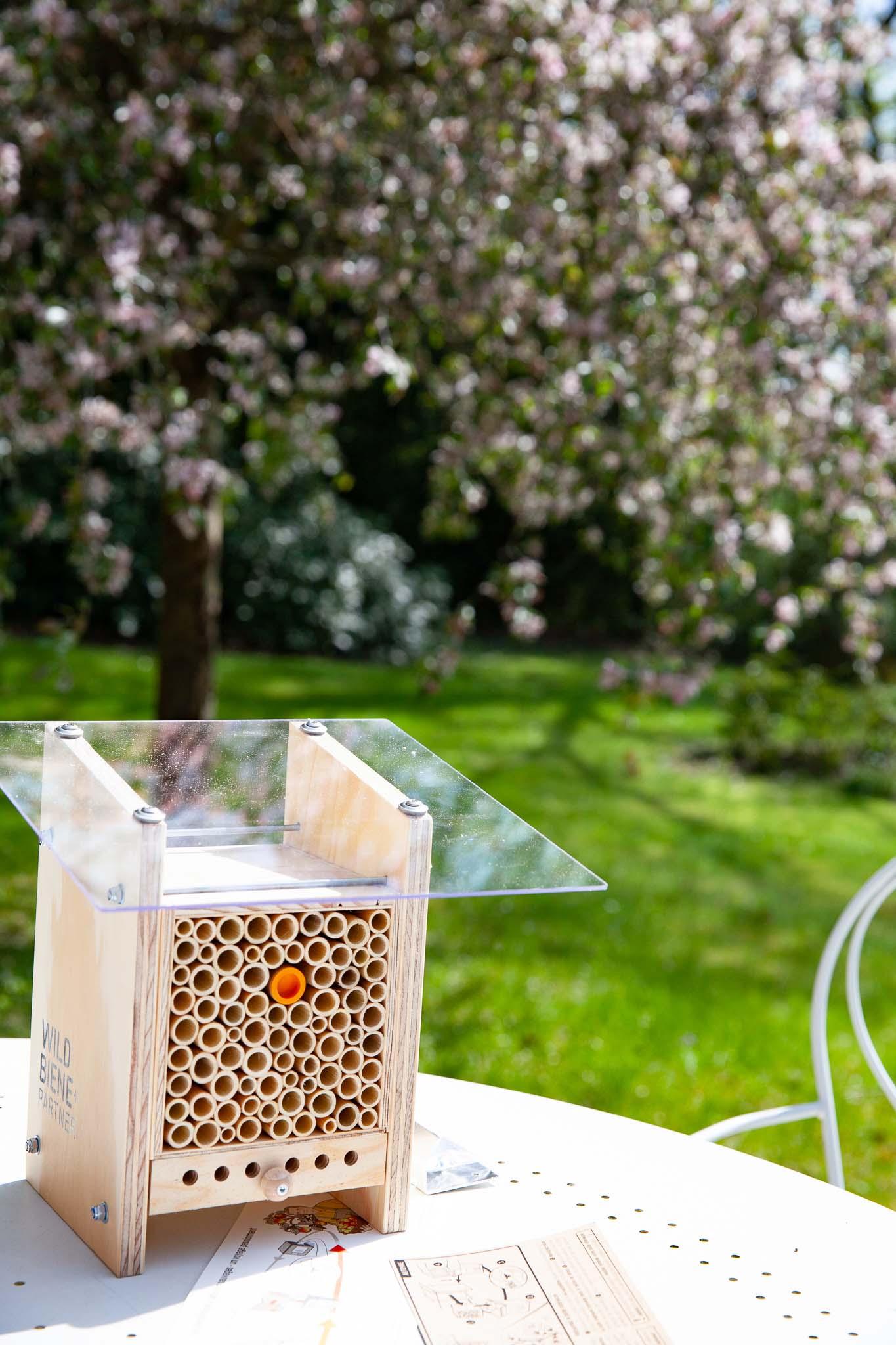 BeeHome devant un pommier du Japon en fleurs