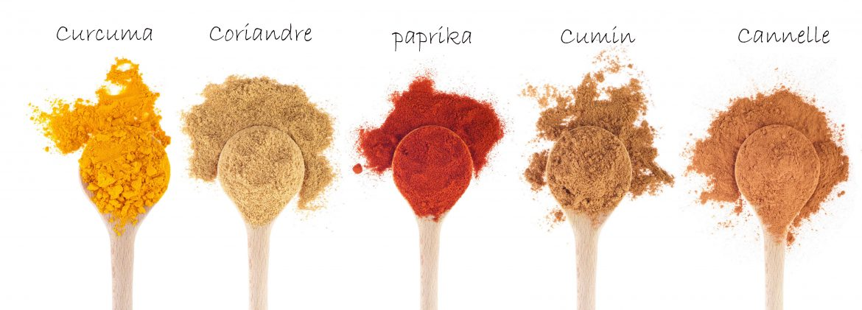 Epices pour le mélange tandoori, masala tandoori