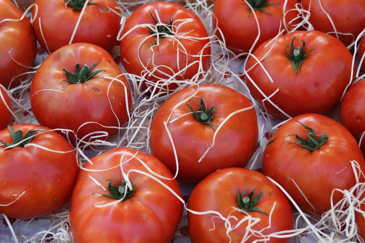 tomates charnues