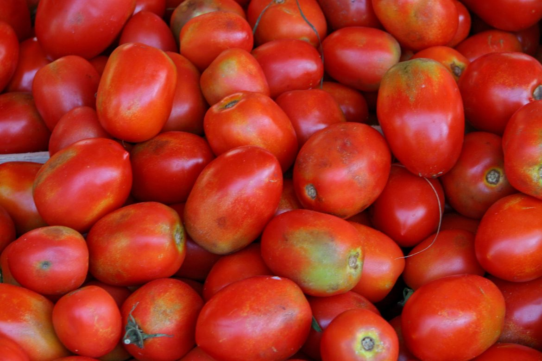 tomates olivette