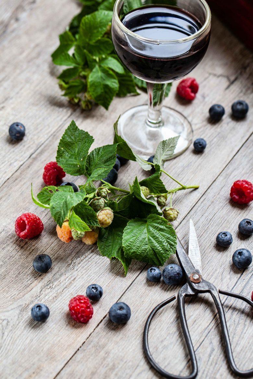 Verre de vin rouge Corbières dans un ballon, fruits rouges, feuillages et ciseaux japonais