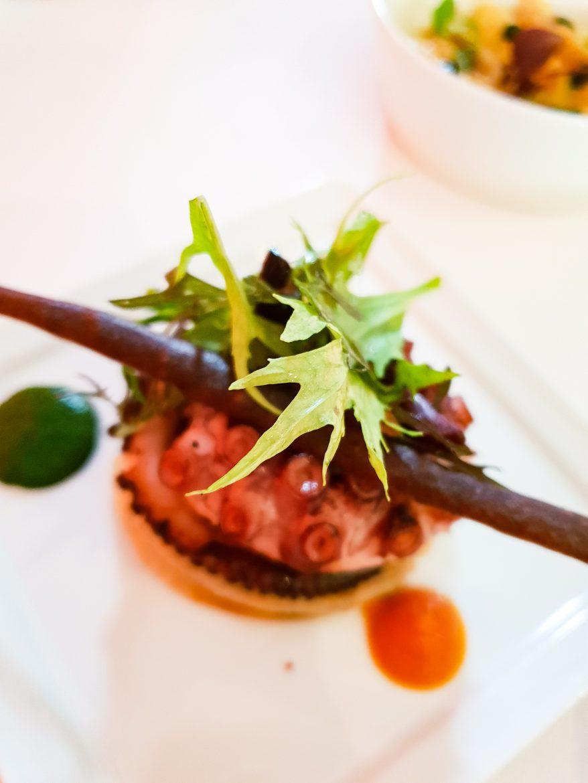 Poulpe grillé aux légumes en briam, tomate épicée, ail des ours et tuile d'olive, mézédé du restaurant Mavrommatis