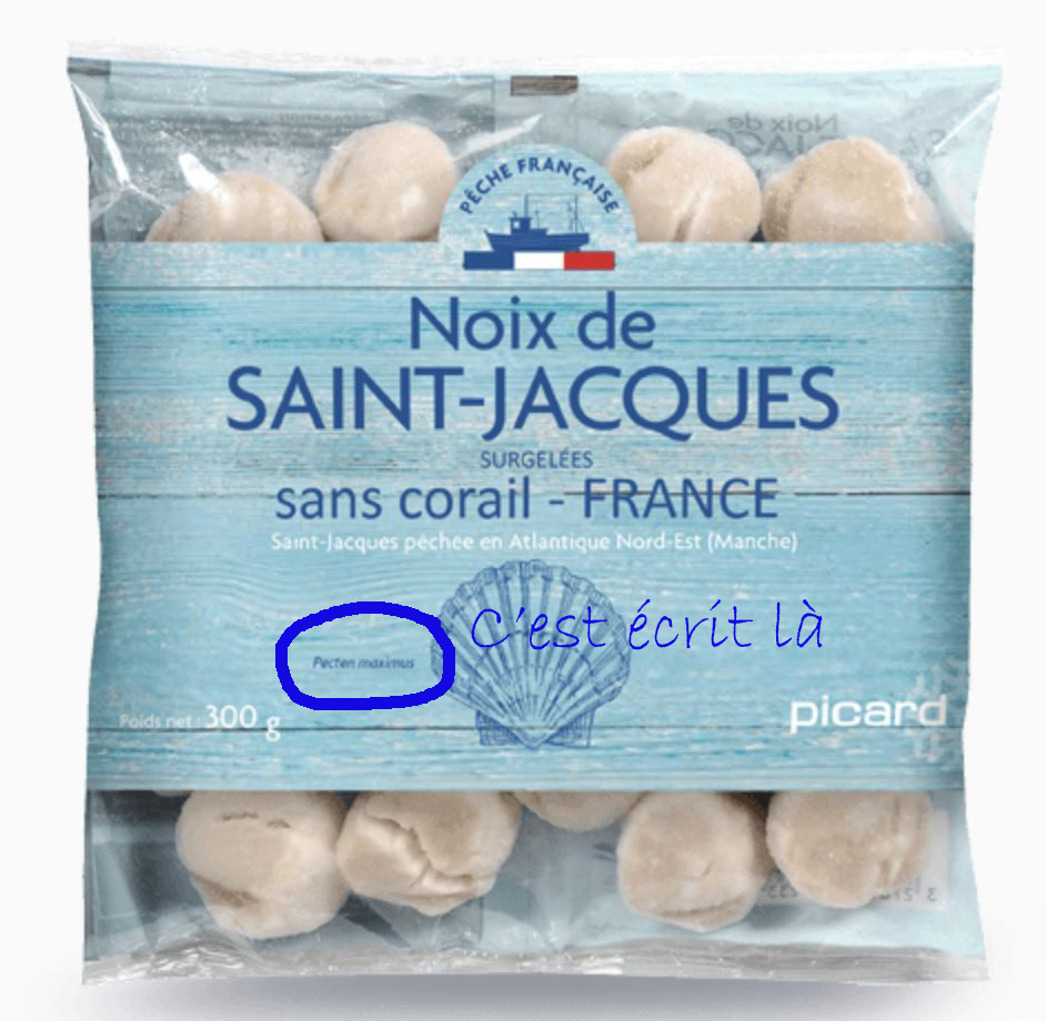 Paquet de noix de saint-Jacques Pecten Maximus surgelées de chez Picard Surgelés