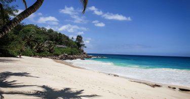 Les Seychelles, anse de Carana Estate, plage et palmiers