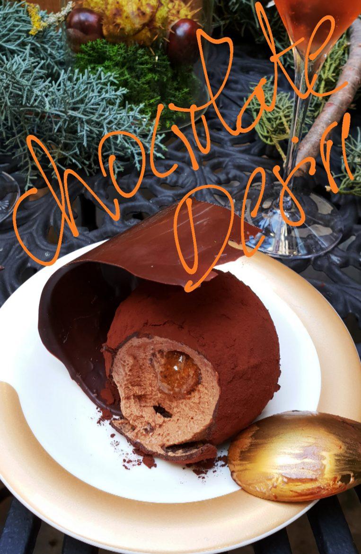Test de la bûche au chocolat Noël 2018 de Hugo et Victor