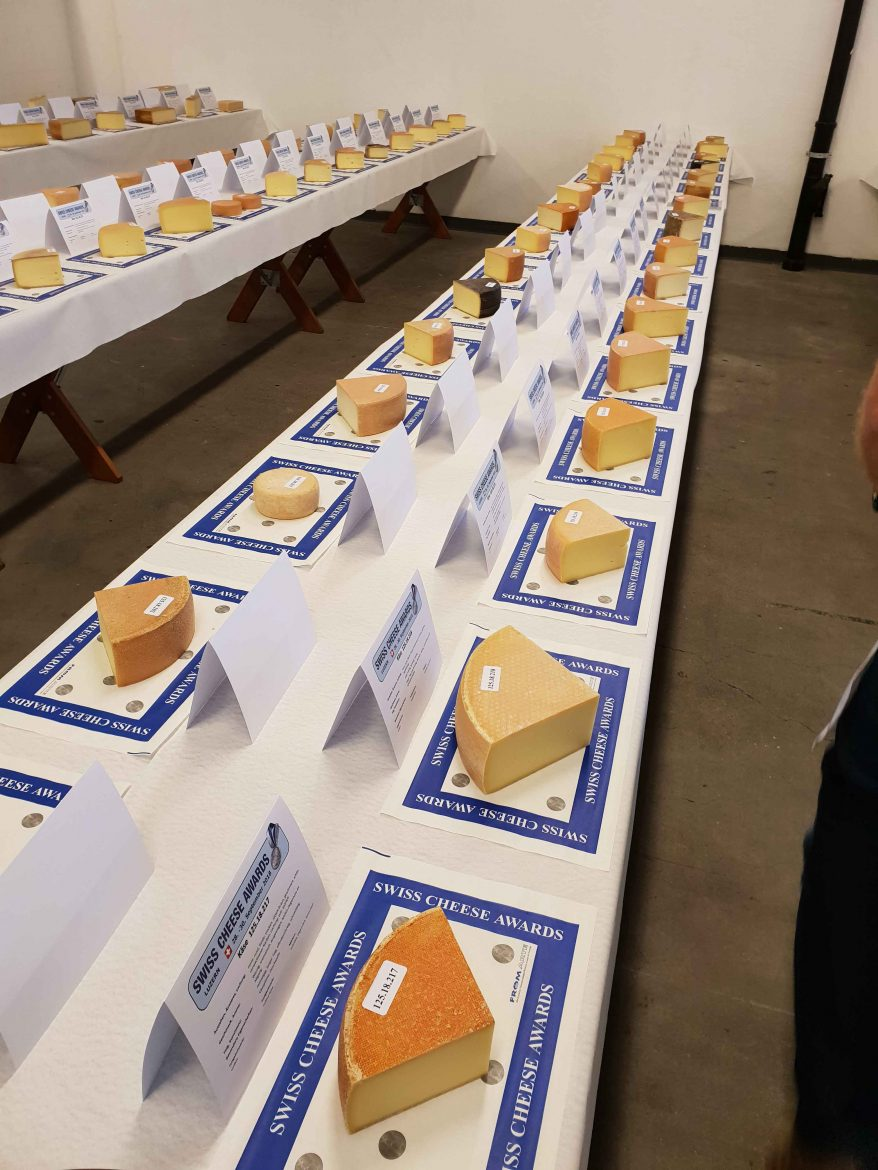 Table du jury des pâtes dures au lait cru aux Swiss Cheese Awards 2018