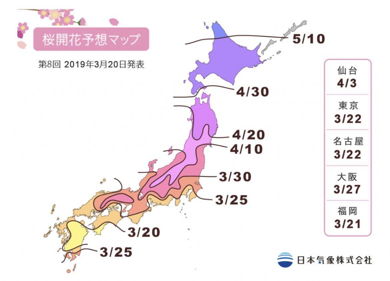 Carte de floraison des cerisiers Sakura au Japons