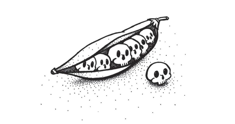 L'illustration des Cabbage rolls par Julie Chauville pour le livre de Julien Barbet Balade Funéraire Gourmande