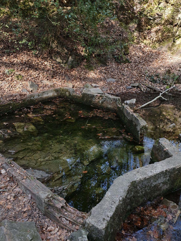 Gorges de Villiers, source Chaude eau, Forêt des Andaines