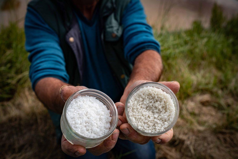 Fleur de sel et gros sel de Noirmoutier