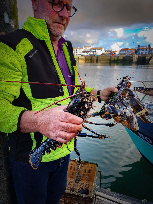 homards bleus dans les mains de Noel Meunier