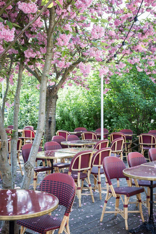 La terrasse fleurie du restaurant L'Île à Issy les Moulineaux