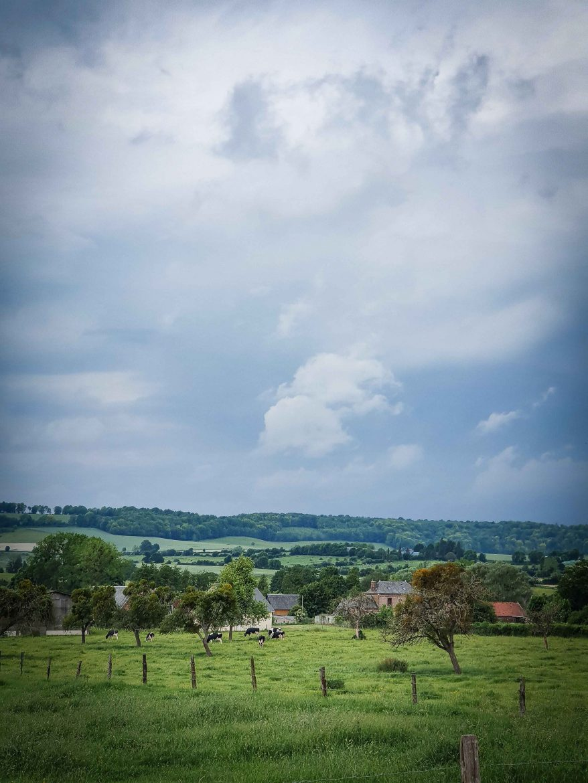 Paysages de Normandie, le Pays de Bray sur la Route des Fromages