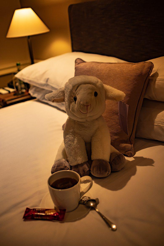 """Le petit mouton qui t""""accueille dans les chambres de Chilston Park Country House Hotel"""