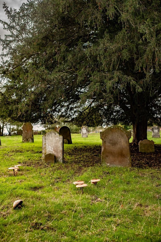 Le cimetière de Warehorn dans le Kent