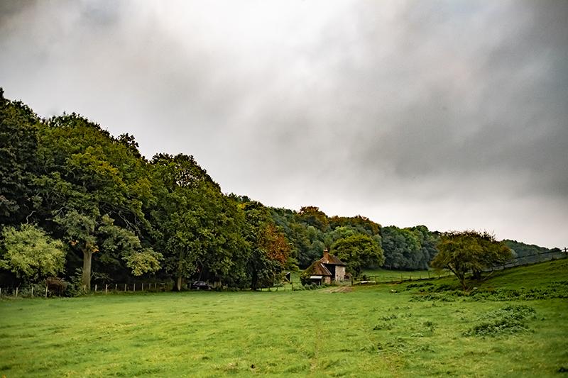 Les praires de John Coultrip, éleveur reproducteur dans le comté de Ashford, dans le Kent