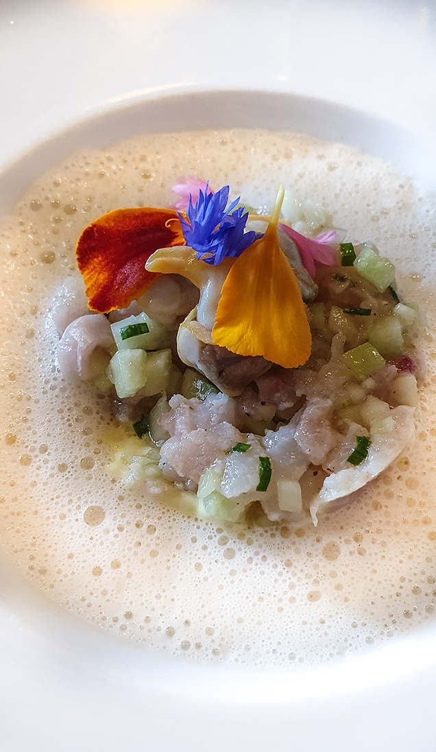 David Guitton, La Table de la Bergerie, dorame marinée concombre et coques