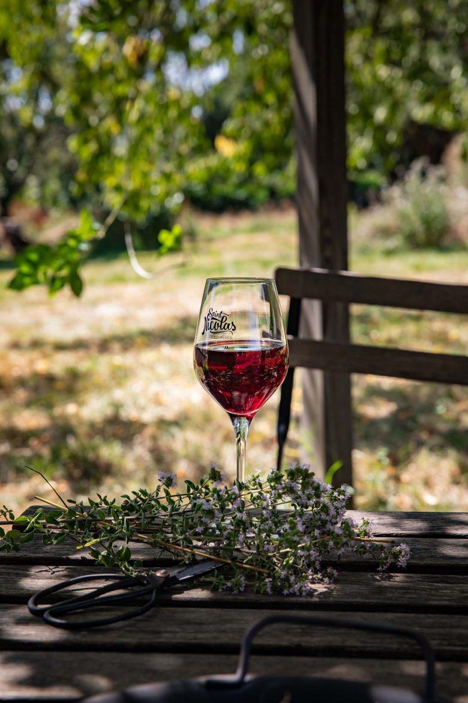 Verre de vin rouge Saint Nicolas de Bourgueil sous une tonnelle en été