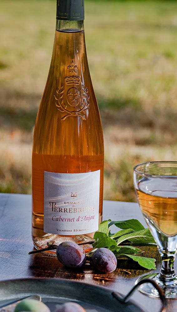 Le cabernet d'Anjou du Domaine de Terrebrune, un rosé tendre